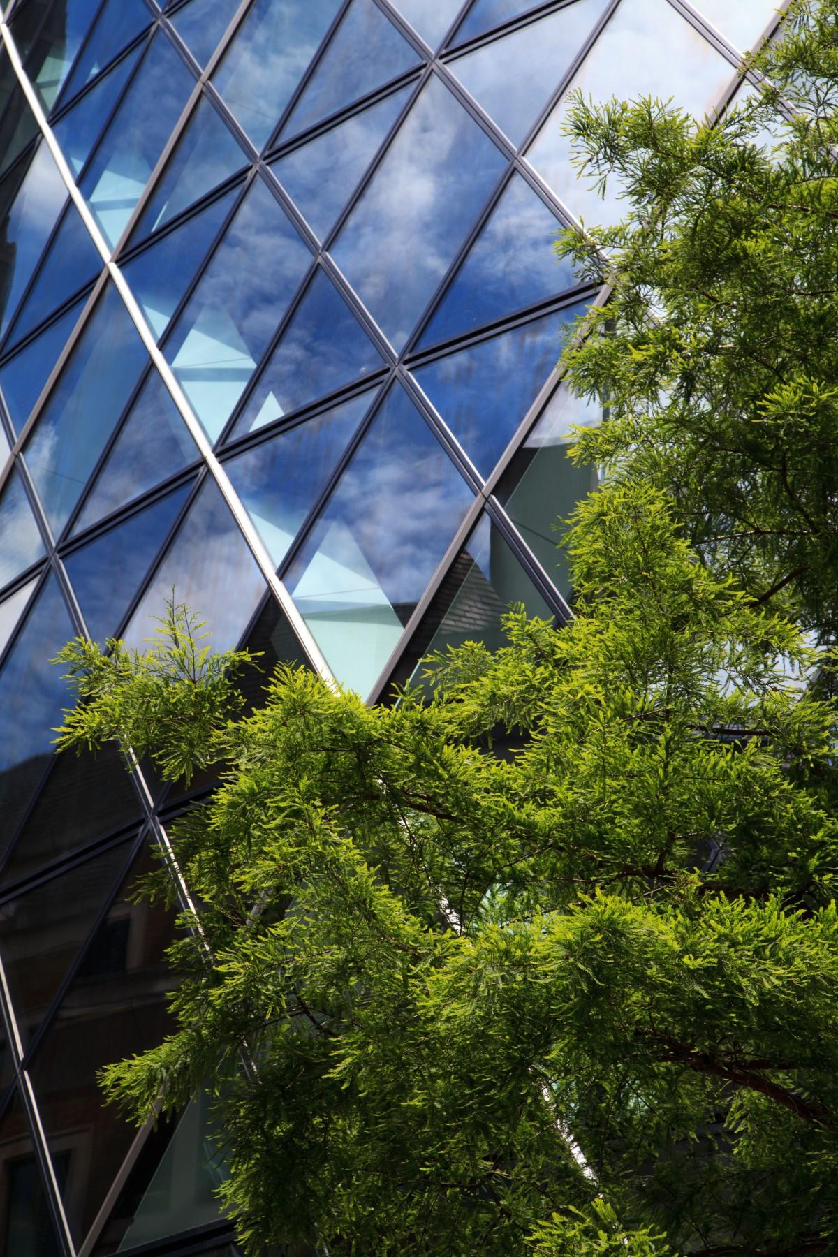 Nederlands bedrijfsleven is voor duurzaamheid binnen herstel