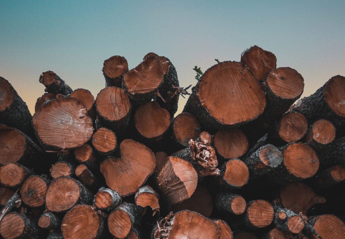 Bijeenkomst houtbouw 22 september